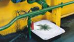 absorbentes-ecologicos