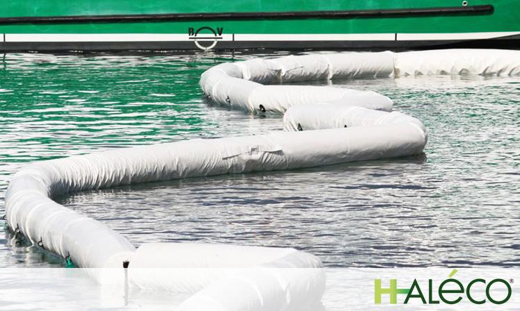 Calidades de absorbentes | Haleco
